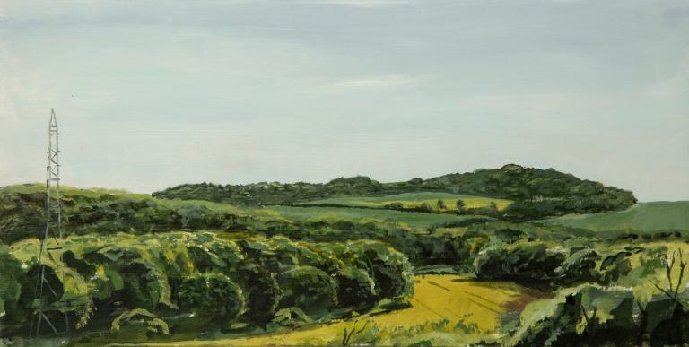 T Wade-Landscape Repro-17