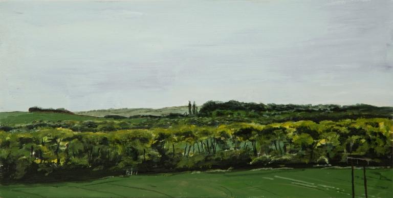 T Wade-Landscape Repro-18