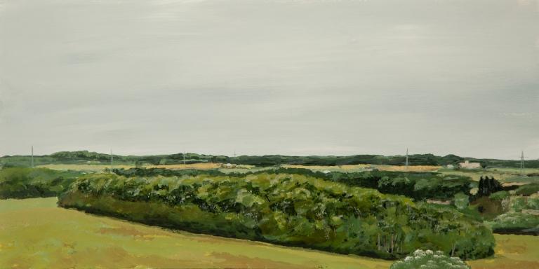 T Wade-Landscape Repro-37