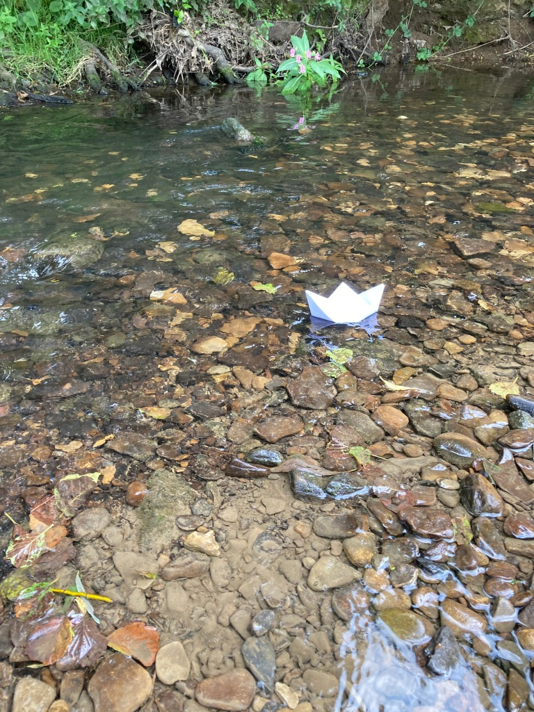 River Dearne 10th August