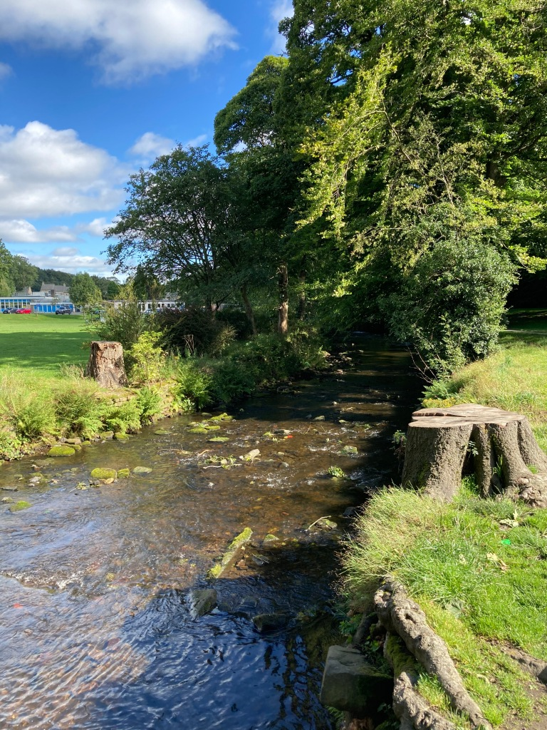 River Holme 24th August